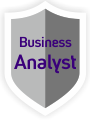 Il Consigliere - business analyst (link)